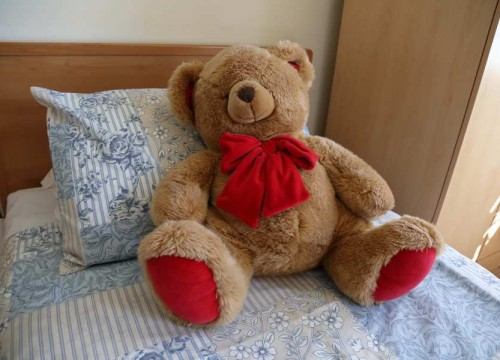 Teddy Bear, Dementia Care Homes in Swanage